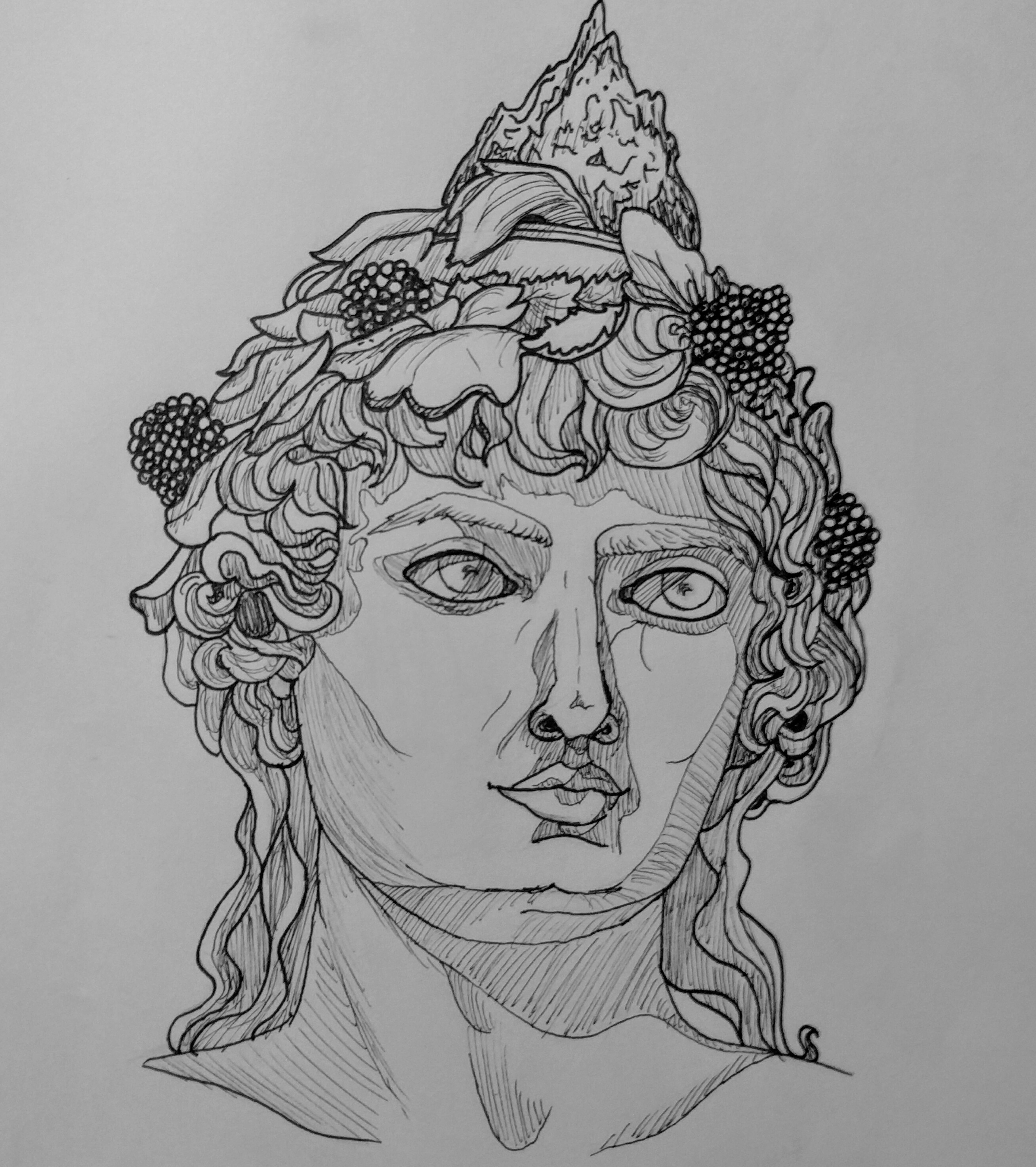 Black and white, pen sketch of Greek bust, depicting a young Dionysus.