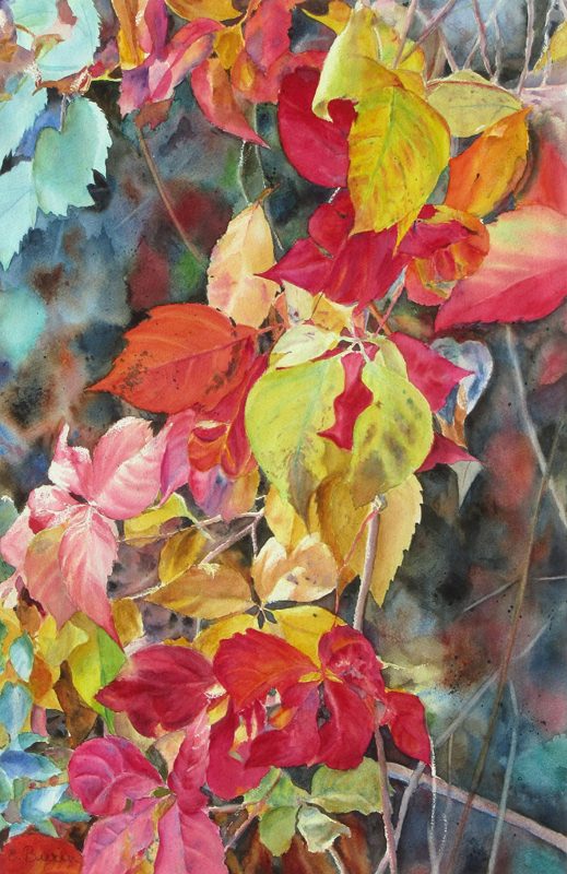 Watercolor of trailing vines in autumn colors
