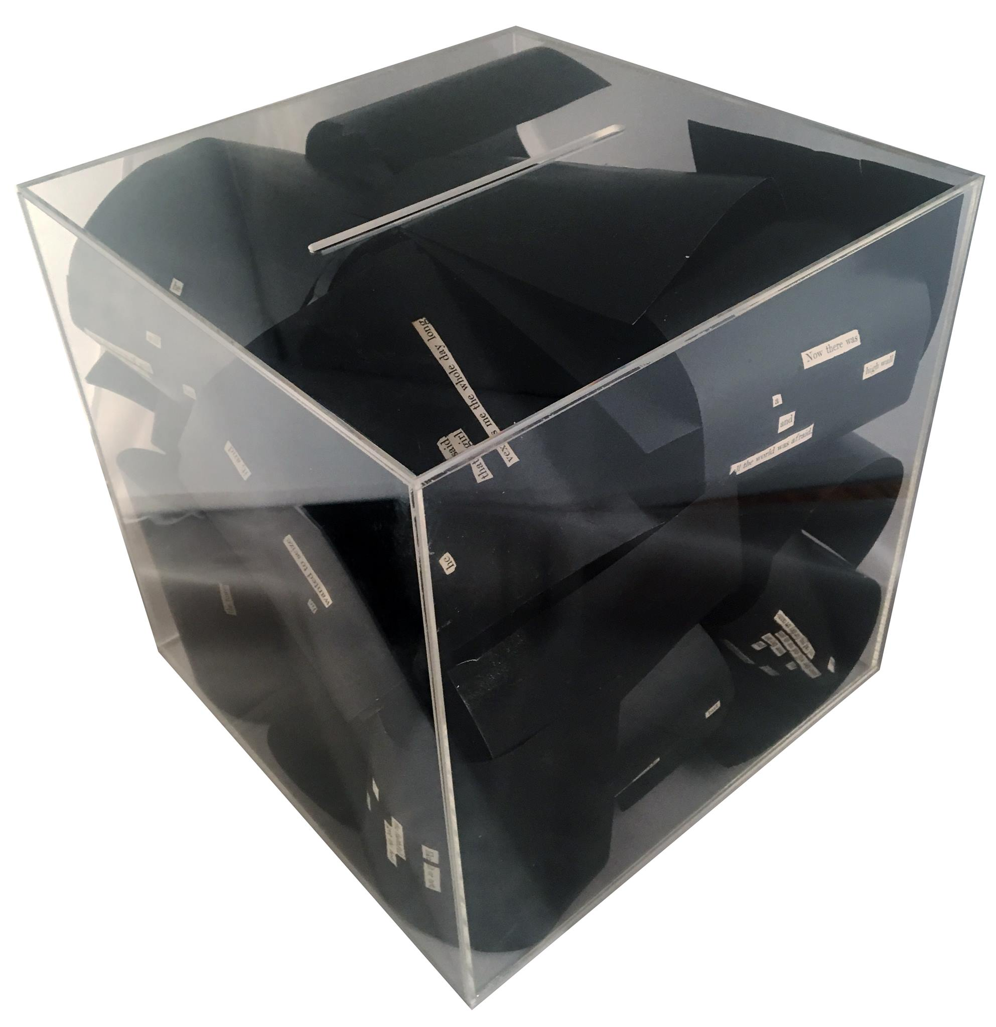 Acrylic box featuring blacked out pages of text.