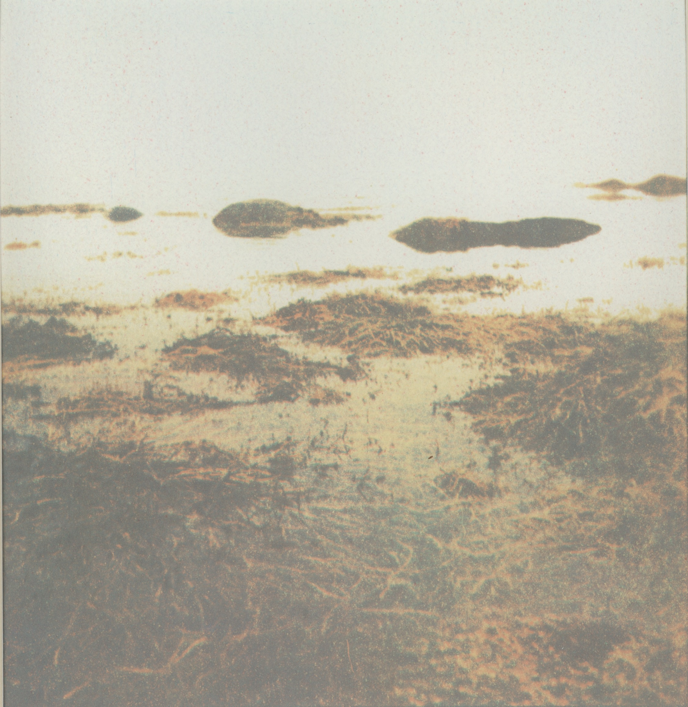 Color Photograph - Gum BiChromate
