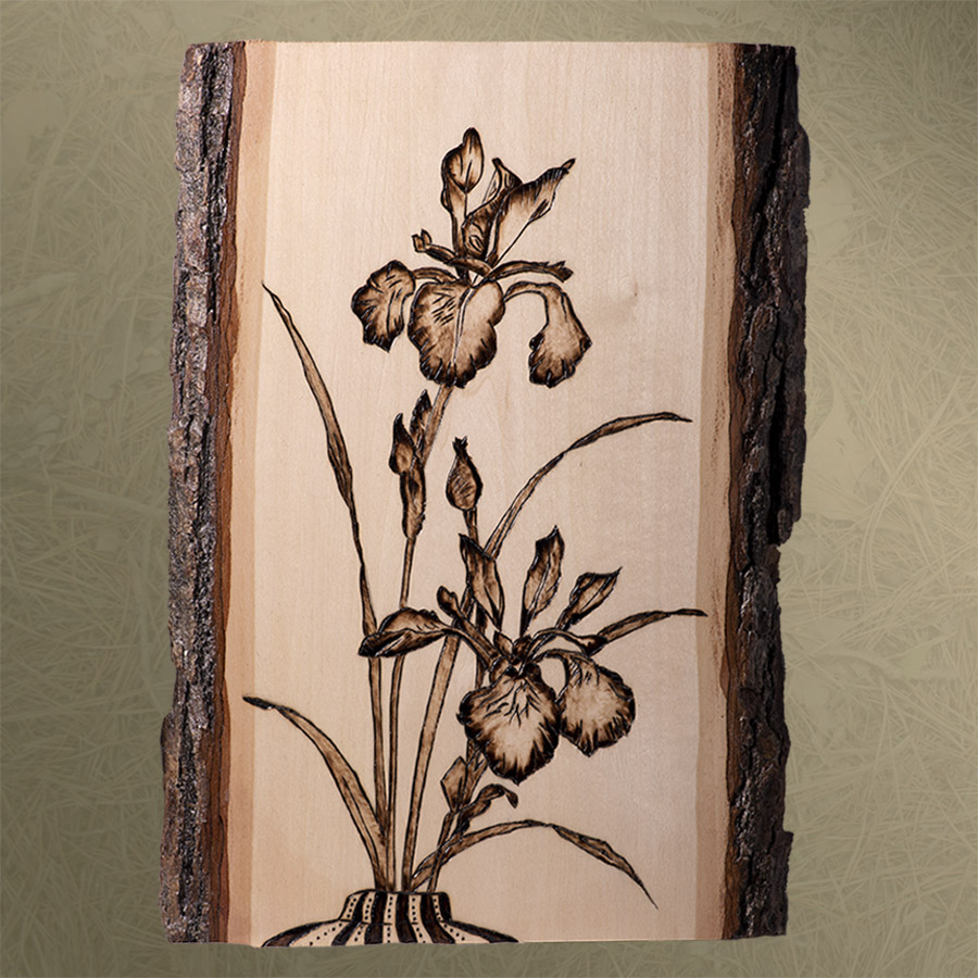Wood Burned - Iris