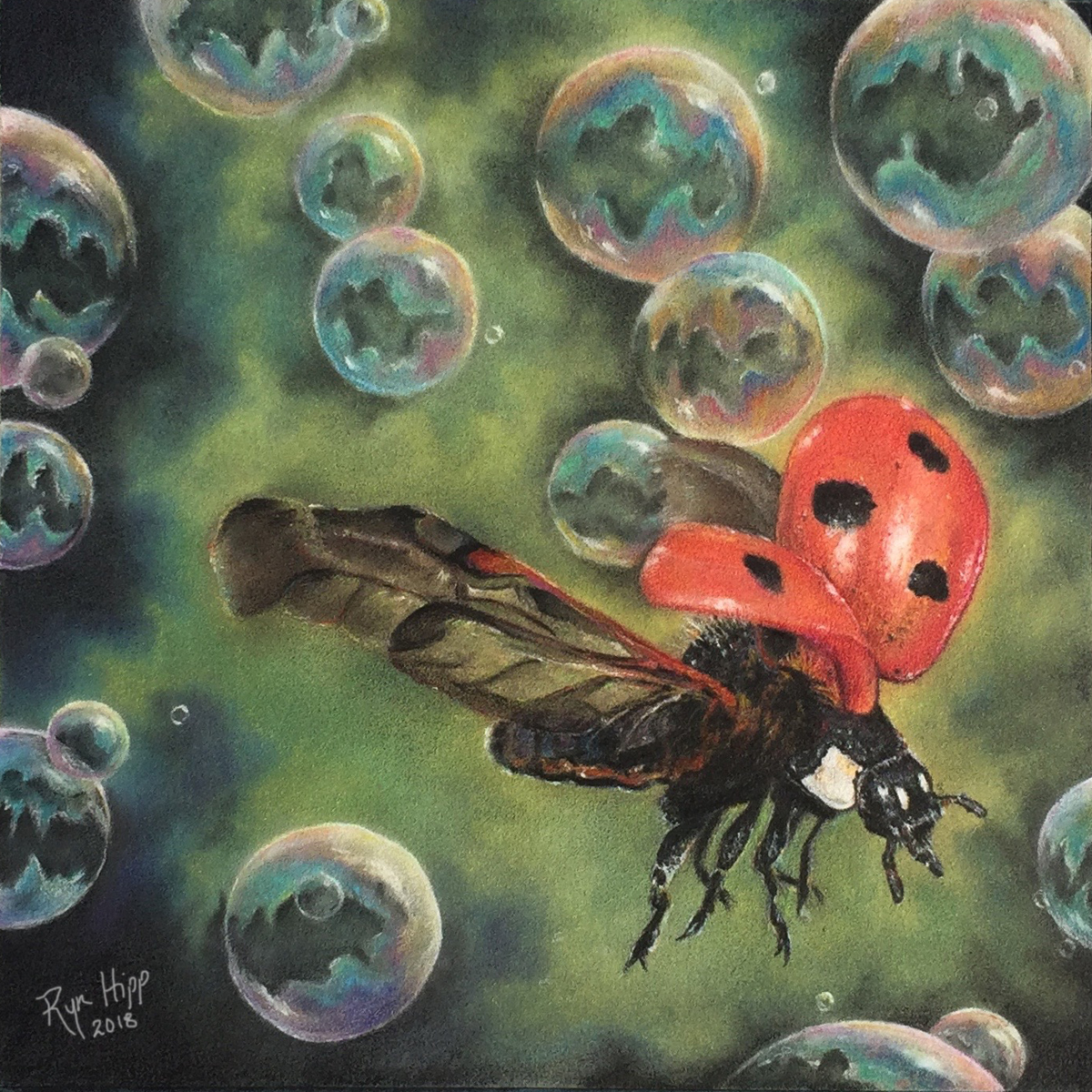 Colored pencil drawing of a ladybug in flight amidst soap bubbles.