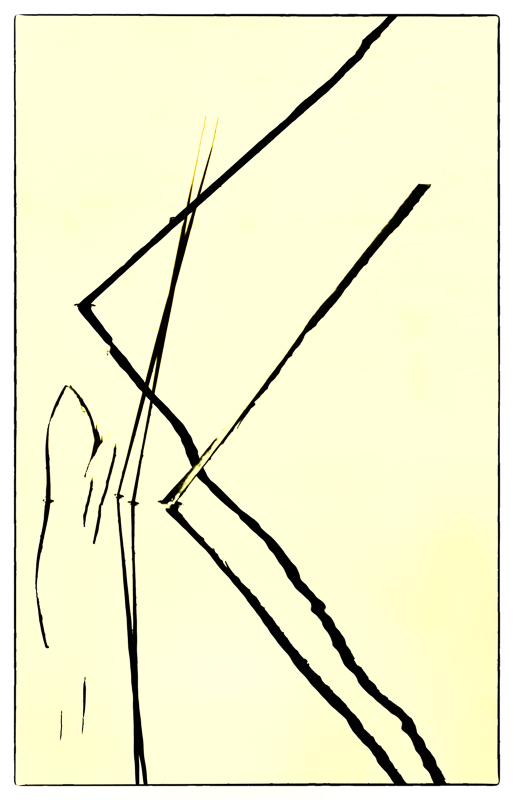 abstract, reeds, reflections