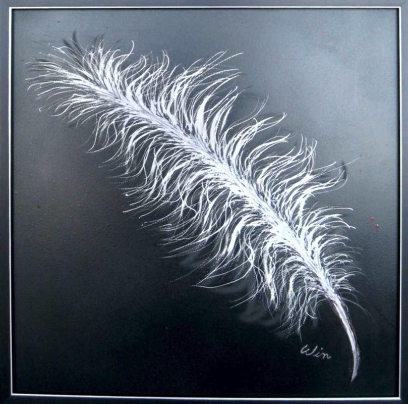 The feather is etched on a sheet of aluminum that was painted black.