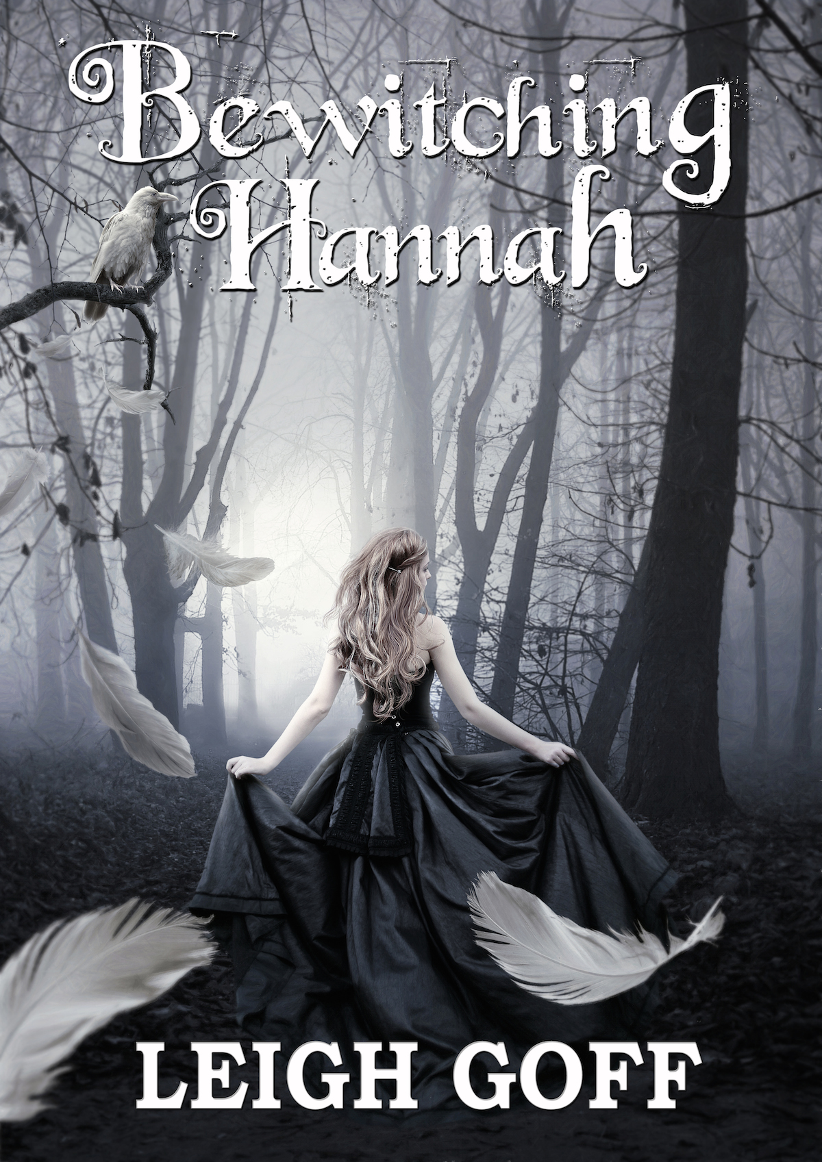Bewitching Hannah by Leigh Goff