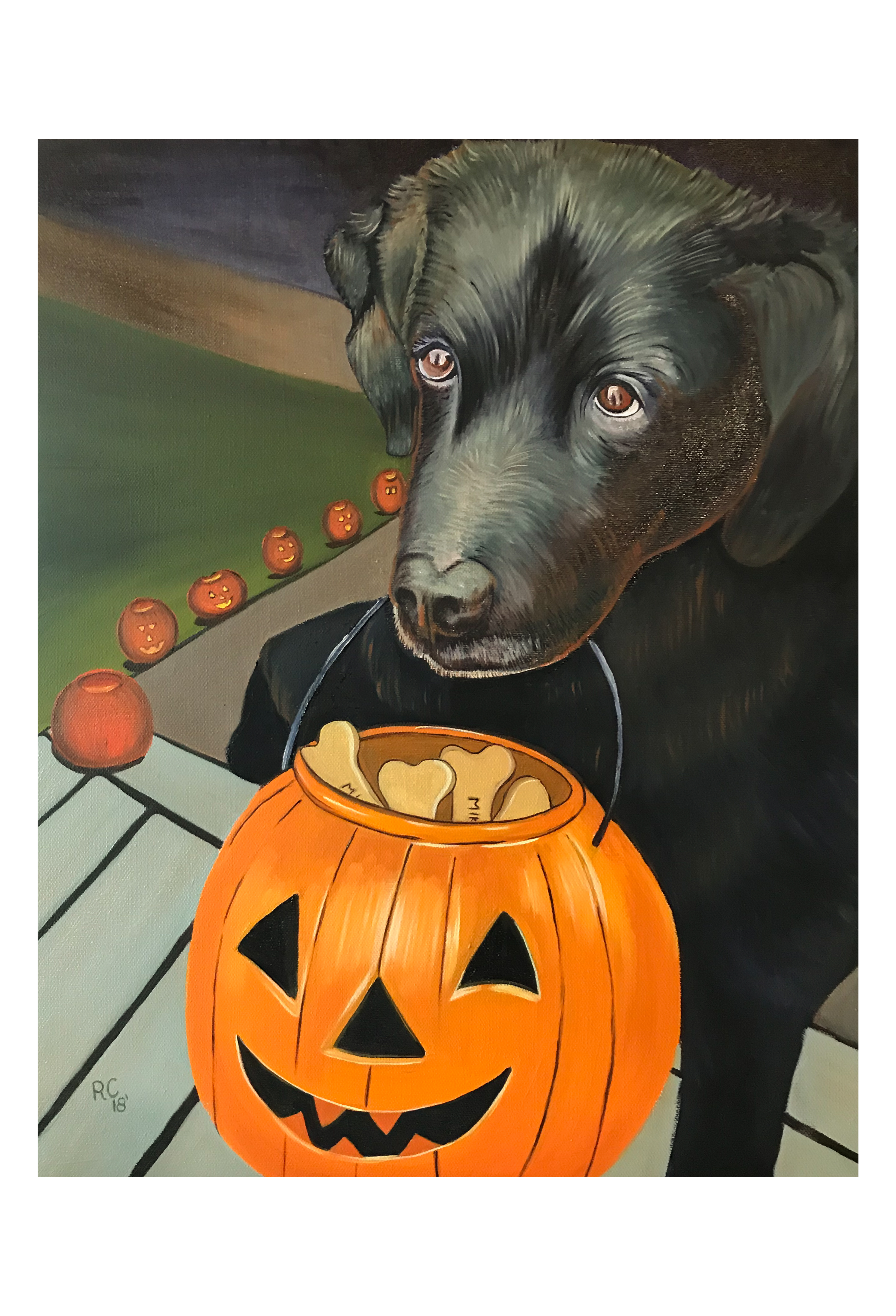 Black Lab Trick or Treating