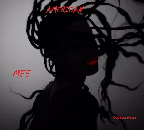 American Mee part f the I AM NOT MY HAIR Collection